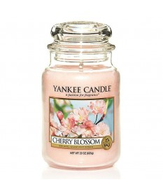 Candela-in-barattolo-Yankee-Candle13